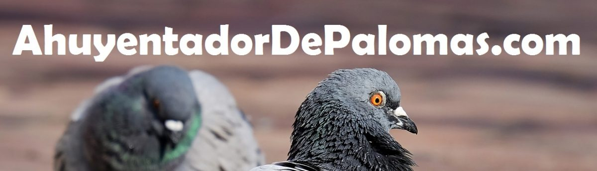 AhuyentadorDePalomas.com